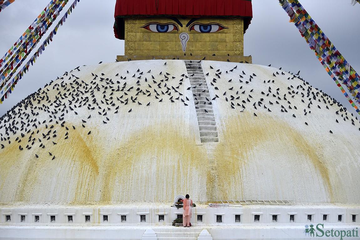 बौद्धनाथ चैत्यमा पूजा गर्दै भक्तजन। तस्बिरः नारायण महर्जन