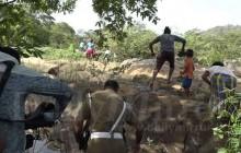तस्बिरः डेलीमिरर डट एलके
